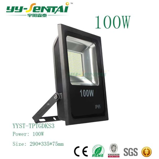 Ce/RoHS IP65 100W Building Lighting Floodlight pictures & photos