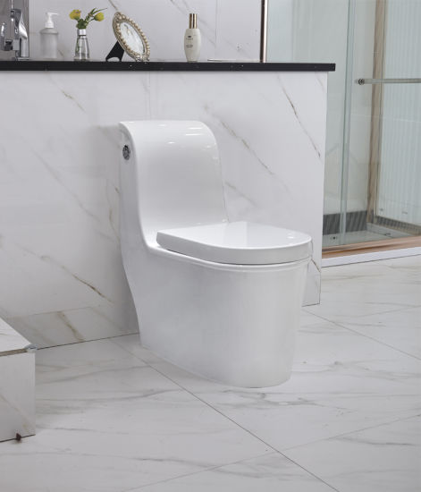 Floor Mounted European Water Closet Wc Toilet New Model (YL1073)