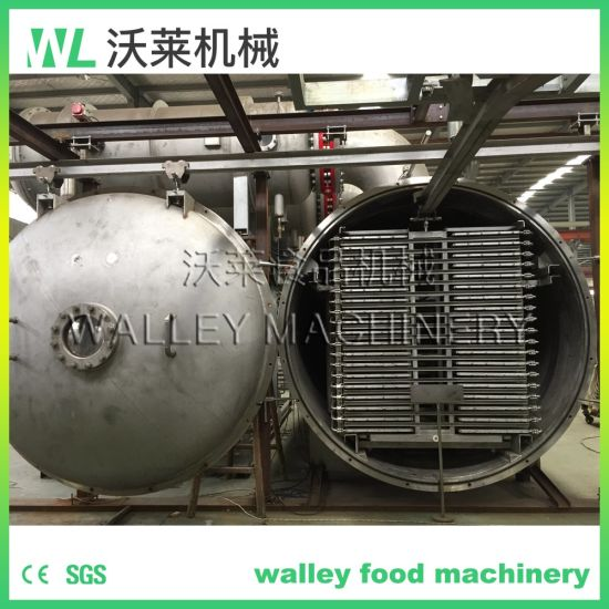 China Vegetable Fruit Meat Vacuum Freeze Dryer pictures & photos