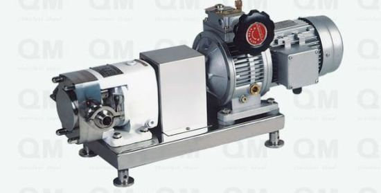 Stainless Steel SS304 SS316L Sanitary Vertical Lobe Pump pictures & photos