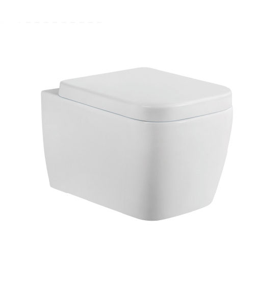 2148 Luxury Washdown Wall Hung Toilet with Concealed Cistern