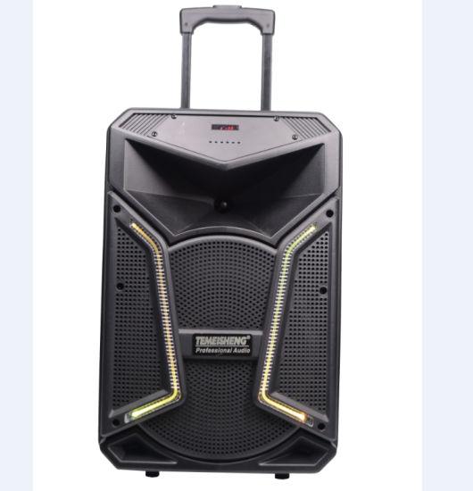 Professional 12 Inch DJ Karaoke Trolley Bluetooth Speaker