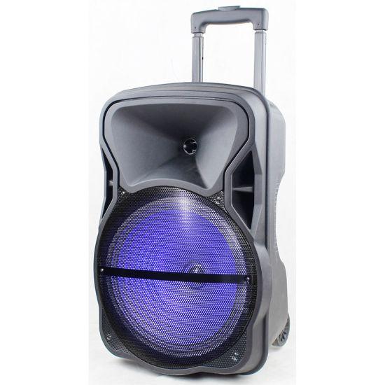15 Inch Super Bass Battery Trolley Loud Speaker Box