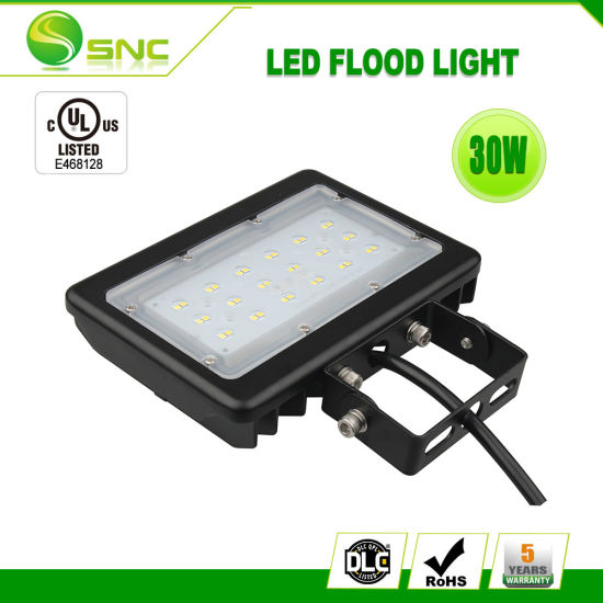 fcb932f82d4 China 30W Mini Size LED Flood Light