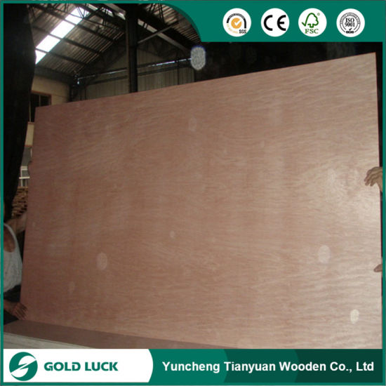 Poplar Commercial Plywood Veneer Furniture Packaging Decoration Marine