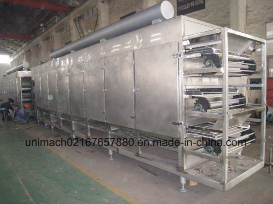 Dw Series Mesh Belt Dryer pictures & photos