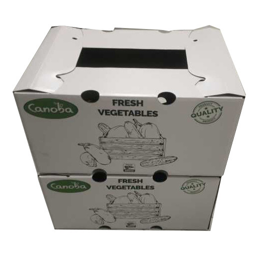 Cute White Packaging Printing Box for Fruit Delivery with One Hole