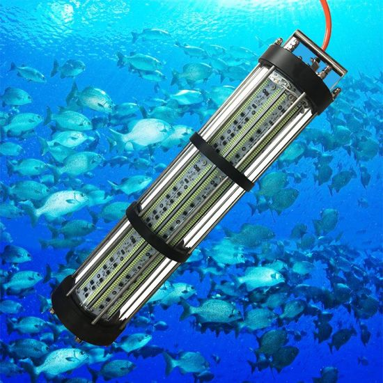 LED Fish Gathering Lamp for Underwater Attracting Lure Fishing Light Squid