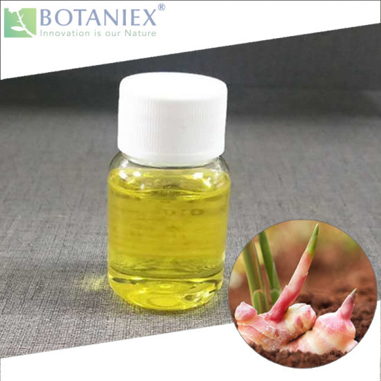 Hot All Natural Quality Ginger Extract, Aroma Ginger Oil, Ginger Essential Oil, Ginger Fragrance Oil