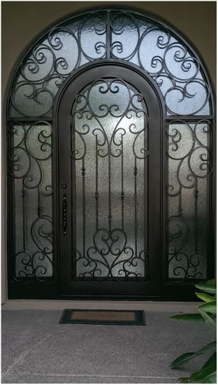 Custom Single Unique Design Wrought Iron Door with Dual Galazing pictures & photos