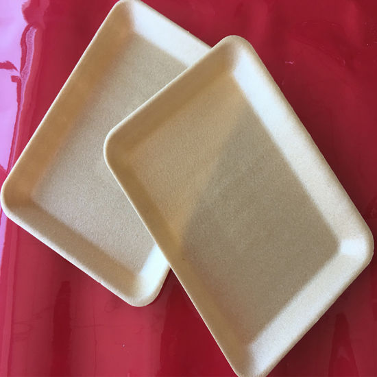 China Biodegradable Corn Starch Foam Meat Packaging Tray - China