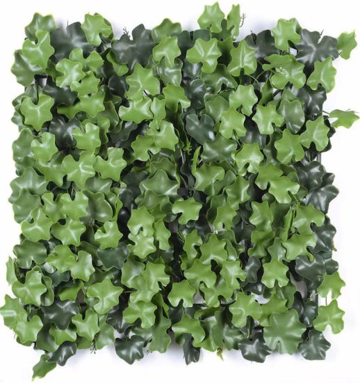 Decoration Artificial Succulent Plant Plastic Topiary Boxwood Green Wall Vertical Garden pictures & photos