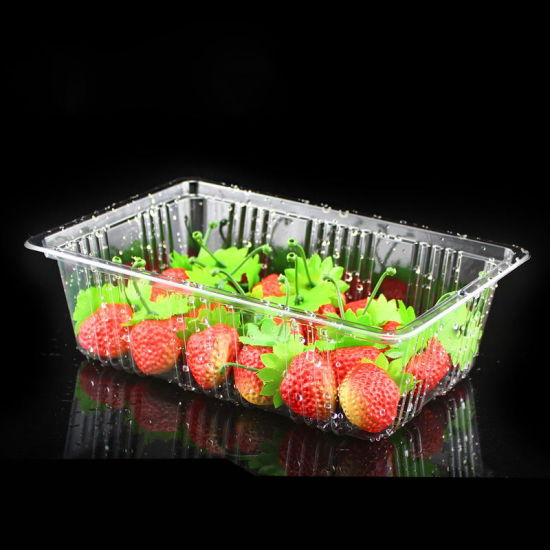 Supermarket PLA blister Biodegradable Silver gold black white clear PLA /PP/PET/PS food packaging box plastic tray pictures & photos