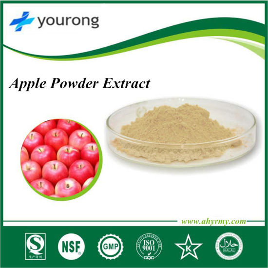 Apple Powder Extract Powder& HACCP Certified Phlorizin Polyphenol 40% 80 % 90% 98% pictures & photos