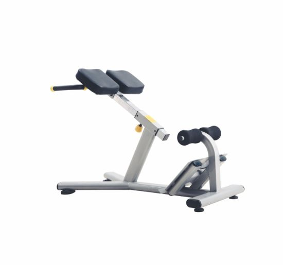 Roman Chair J-026/ Fitness Equipment Bodystrong  sc 1 st  Shandong Baodelong Fitness Co. Ltd. & China Roman Chair J-026/ Fitness Equipment Bodystrong - China Free ...