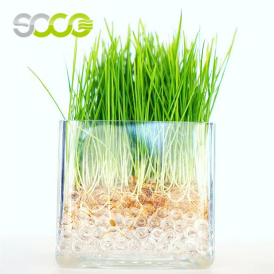 China Soco Non Toxic Water Beads Soil For Plant Cultivation China