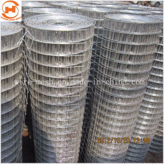 Stainless Steel/Galvanized Welded Wire Fencing Mesh pictures & photos