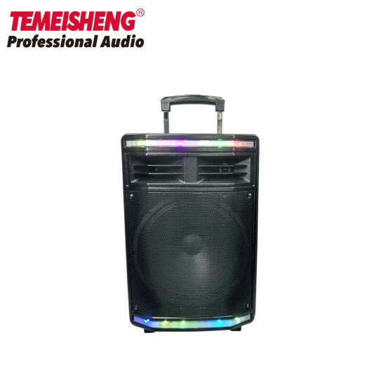 Portable Rechargeable Wireless Mic Trolley with Bluetooth Speaker