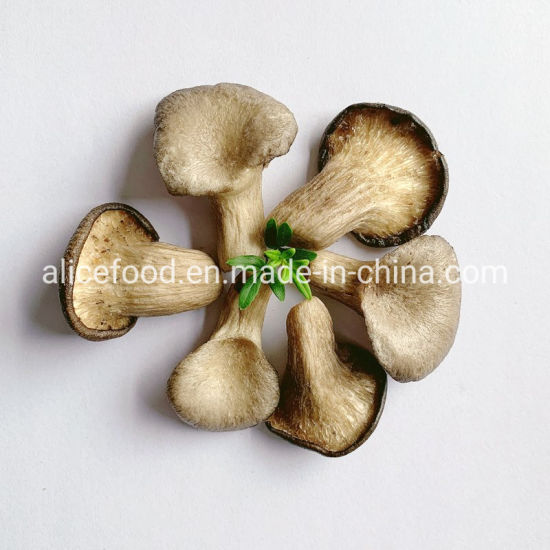 Vacuum Fried Vegetables and Fruits Vf Oyster Mushroom pictures & photos