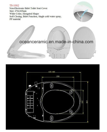 Fabulous China Ts 1002 Elongated Toilet Seat Non Electronic Bidet Short Links Chair Design For Home Short Linksinfo