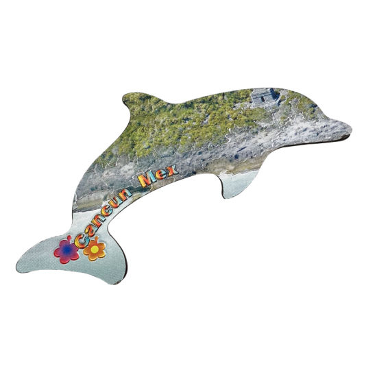 Foil Magnet Dolphin Magnet Beach Souvenir Magnet for Gifts pictures & photos