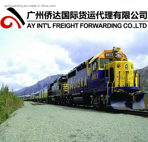 Promotion: Afghanistan Shipping by Rail Transportation (25 days to Hairatan, Afghanistan) pictures & photos