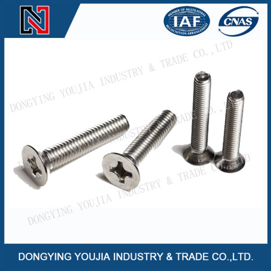 Stainless Steel Hex Socket Head Cap Screw/Grub Set Screw/Pan Head Screw/Flat Head Fastener Screw/Self Drilling Tapping Screw/ Machine Screw pictures & photos