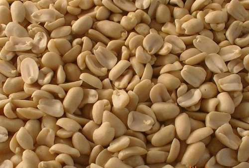 New Crop Good Quality Half Peanut for Sale pictures & photos