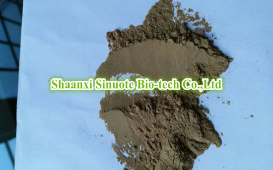 Factory Natural Eleutherococcus Senticosus/ Siberian Ginseng 10: 1 Extract Powder pictures & photos