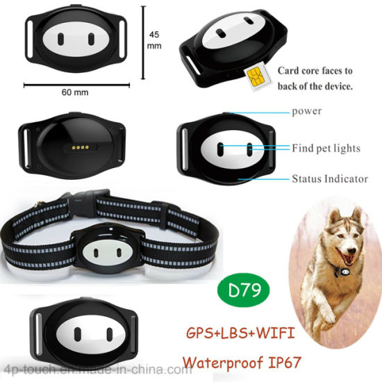 IP67 Waterproof Pet GPS Tracking with Real Google Map Location D79