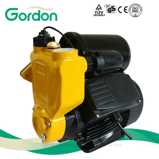 Domestic Electric 100% Copper Wire Self-Priming Auto Pump with Flange pictures & photos