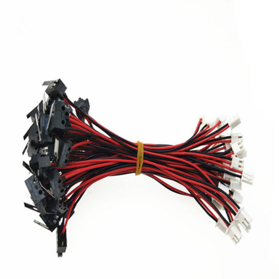 China Micro Switch Cable with Red Black Wires and Jst Xh 2p ...