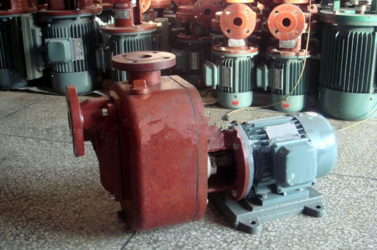 Zs Type FRP Self-Priming Pump pictures & photos