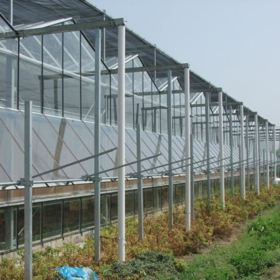 Glass Greenhouse with Equipment for Agriculture/Plant Vegetables Fruits Flowers