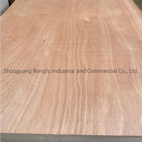 Reliable Reputation Poplar Core Hardwood Plywood with Best Price