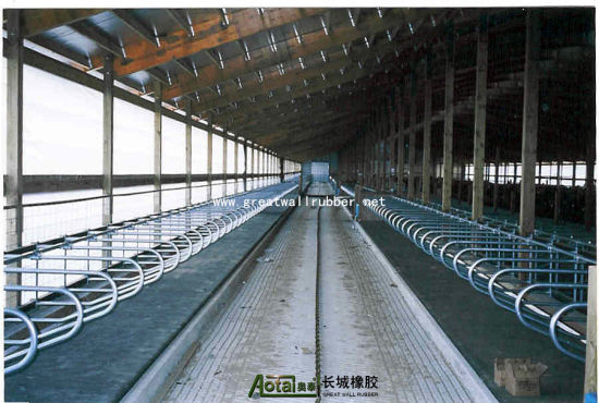 ISO9001 for Stall Rubber Sheet, Stable Mat, , Rubber Cow Mat, pictures & photos