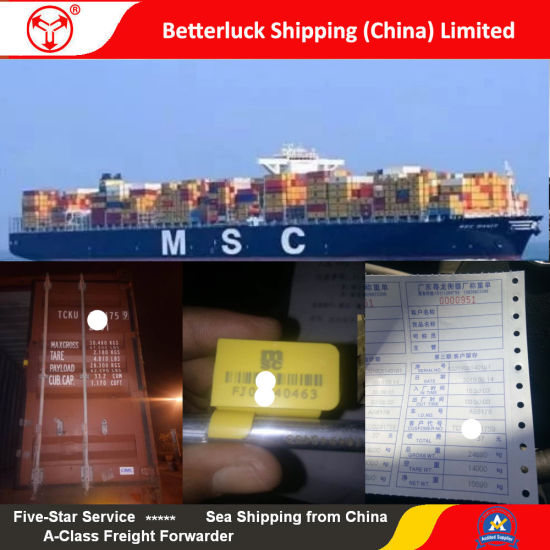 Shipping agent from Nansha to Miami Sea freight Logistics service pictures & photos