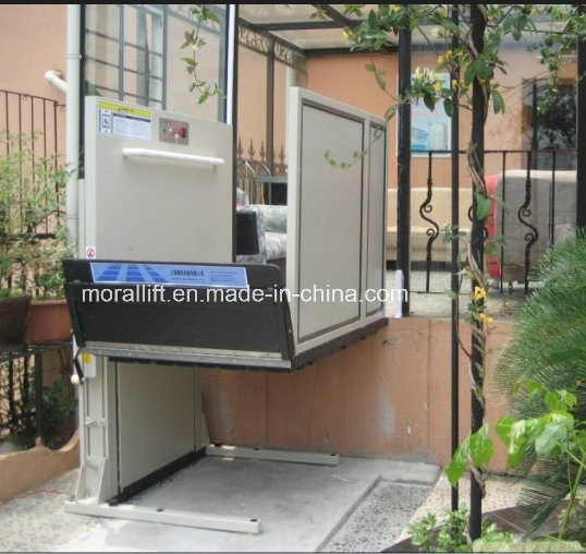 Electric SJG Wheelchair Lift for Sale pictures & photos
