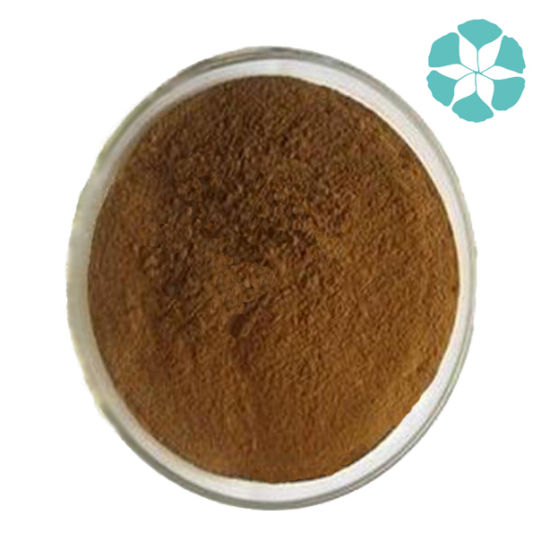Eucommia Ulmoides Extract / Chlorogenic Acid pictures & photos