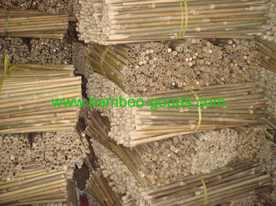 Natural Thin Bamboo Poles/Stakes/Canes Cheap pictures & photos
