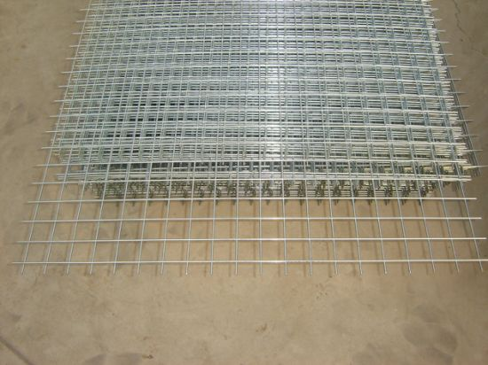 Electro and Hot Dipped Galvanized Welded Wire Mesh Panel
