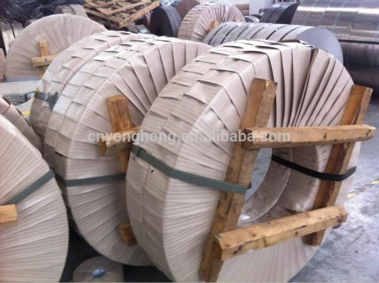 0.78mm Thickness 5052 5754 5083 5A02 5A05 Aluminum Strips From Manufacturers pictures & photos