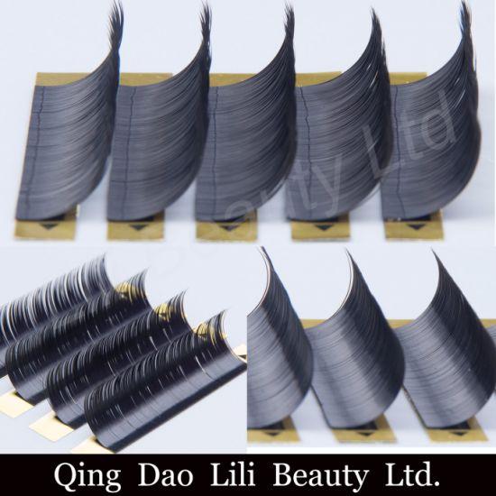 c197925d11a China High Quality Mink Lash L Curl Eyelash Extension - China ...