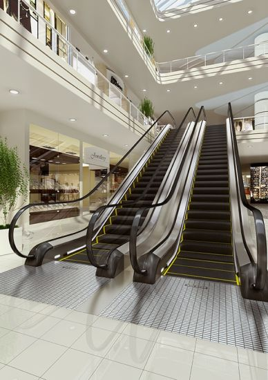 Vvvf Control Commercial Escalator with 35 Degree 1000mm/800mm/600mm Step Width pictures & photos