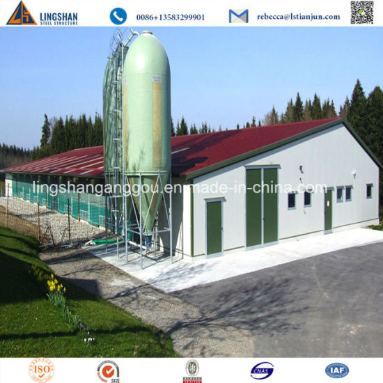 China Good Price Turn-Key Prefab Steel Structure Poultry Farm House on small farm house, hawaii farm house, california farm house, modular farm house, luxury farm house, green farm house, farmhouse farm house, simple farm house, stone farm house, metal farm house, contemporary farm house,