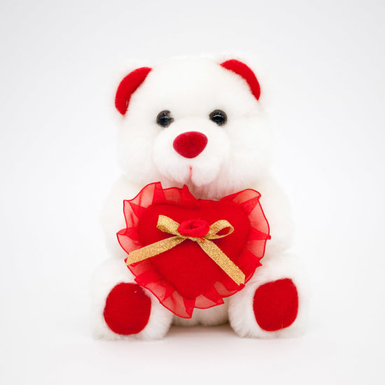 Valentine's Day Bear with Heart Cushion
