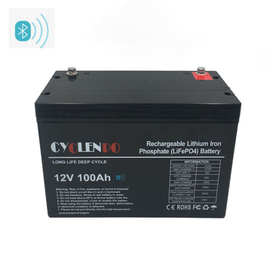 Smart Controlled Litium Ion LiFePO4 12V 100ah with Bluetooth APP Lithium Battery 12V 100 Ah