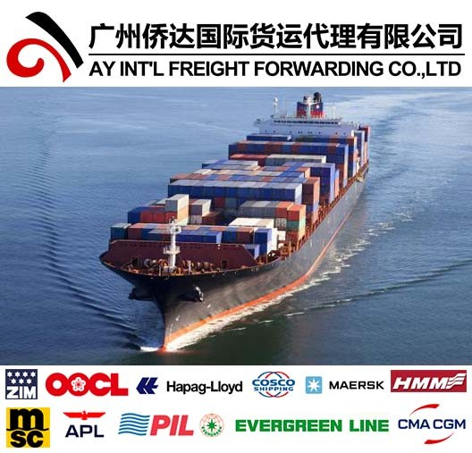 Container Shipping Service to Puerto Rico From China by Sea