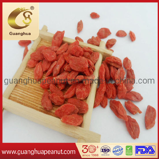 China Suitable Edible Dried Goji Berry With Health And Good Taste China Lower Agricultural Residue Goji Berry Best Quality Dried Goji Berry