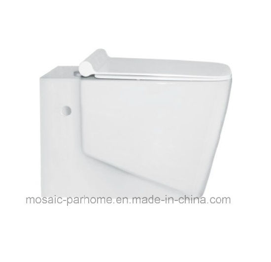 New Product One Piece Washdown Wall Hung Toilet